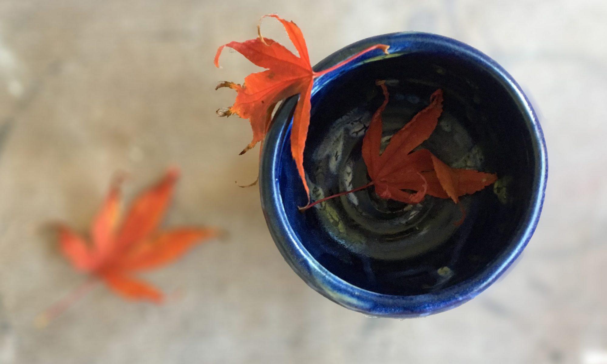 Sarah Core Ceramics